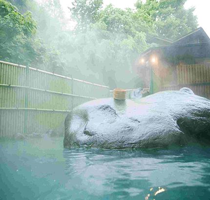武汉温泉浴池水处理