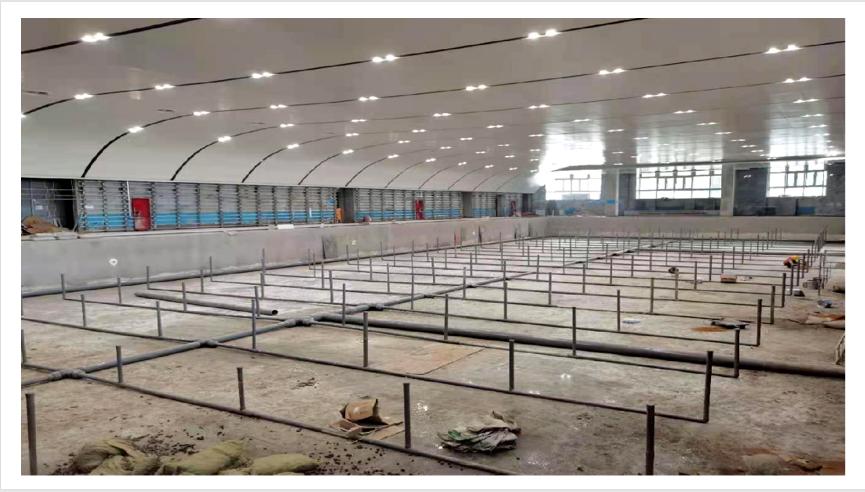 郑州市民体育中心游泳馆